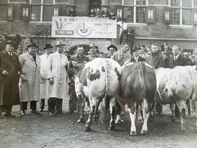 Vet Vee op de Vette Veemarkt van 1960