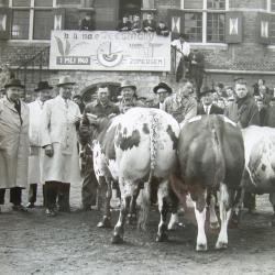 Boerinnenjeugdbond