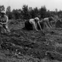 Ruiters Boerenjeugdbond