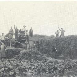 Landbouwer Raymond Van De Veire, Bassevelde