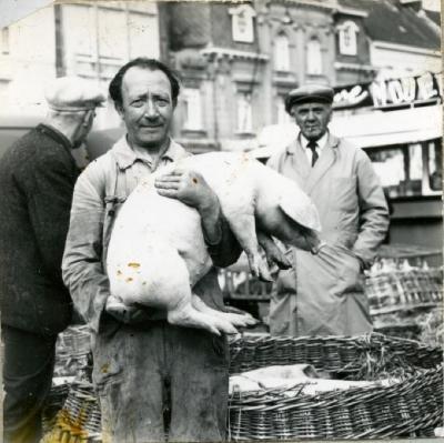 Biggenmarkt Eeklo in 1967