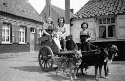 Transport van toen: een hondenstiel