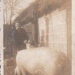 Melkprijskamp, Sint Laureins