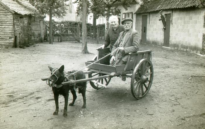 Petrus Soens