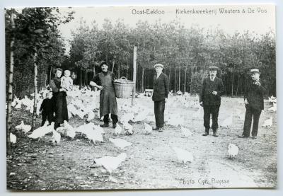 Kippenkwekerij Wauters & De Vos, Oosteeklo