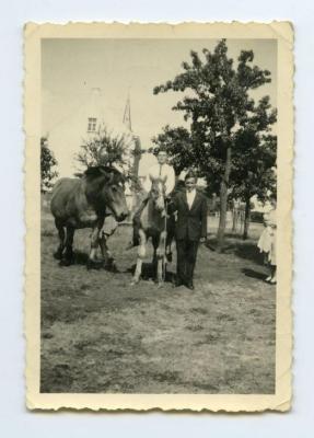 Rijden met de paarden op het erf