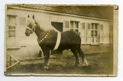 Jaarmarkt Assenede, 1939 (1)