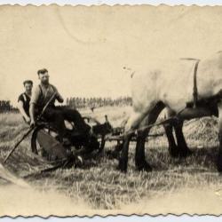 Boeren Jeugdbond, Evergem, 1948