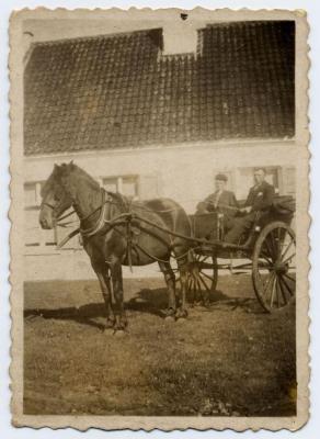 Paardenkoets op het hof, Zelzate