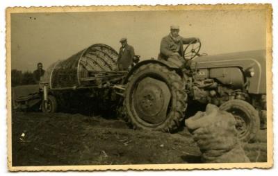 Aardappelen rooien met de aardappelmachine (2), Kaprijke