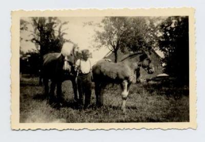 Cyriel Heyde bij de paarden