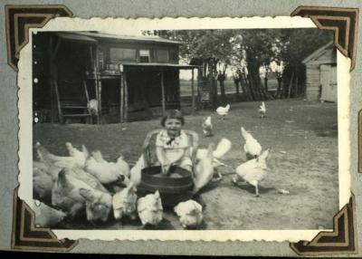 Kippen voederen (1)