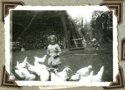 Kippen voederen (2)