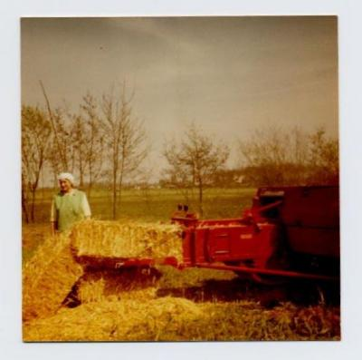 Loonwerkers in Evergem (2)
