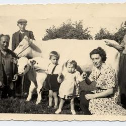 Aardappelen rooien met de ploeg, 1941-1942