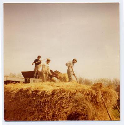 Loonwerkers in Evergem (1)