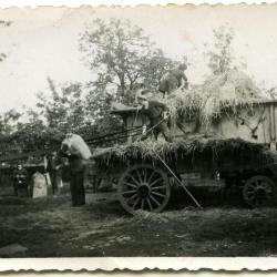 Honoré Van De Steene en kleindochter gaan samen oogsten