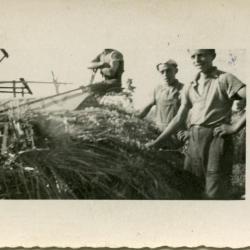 Boer Minnaert met zijn boerenpaard, Lembeke, 1930-1940