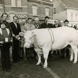 Vee, Zomergem, 1960-1980