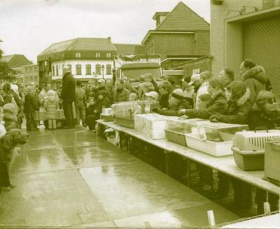 Kinderen laten hun huisdieren keuren op Vette Veemarkt, Zomergem, 1995-2005