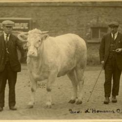 Prijsbeesten Léon Boufflerd, 1932