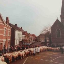 Prijsbeesten, Zomergem, 1960