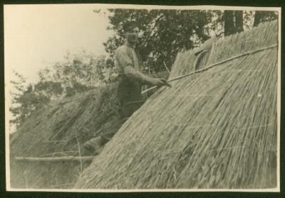 Oscar Beernaert dekt een aardappelkuil, Kaprijke, 1920-1930