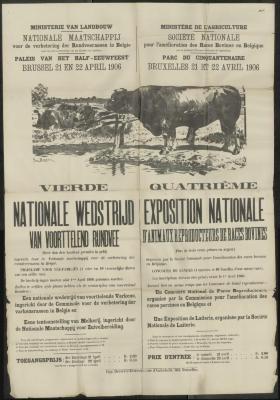 NATIONALE WEDSTRIJD van voorttelend rundvee/ EXPOSITION NATIONALE d'animaux reproducteurs de races bovines. Brussel - Bruxelles